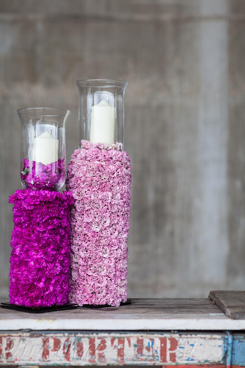 Garden Pinks by Simon Lycett