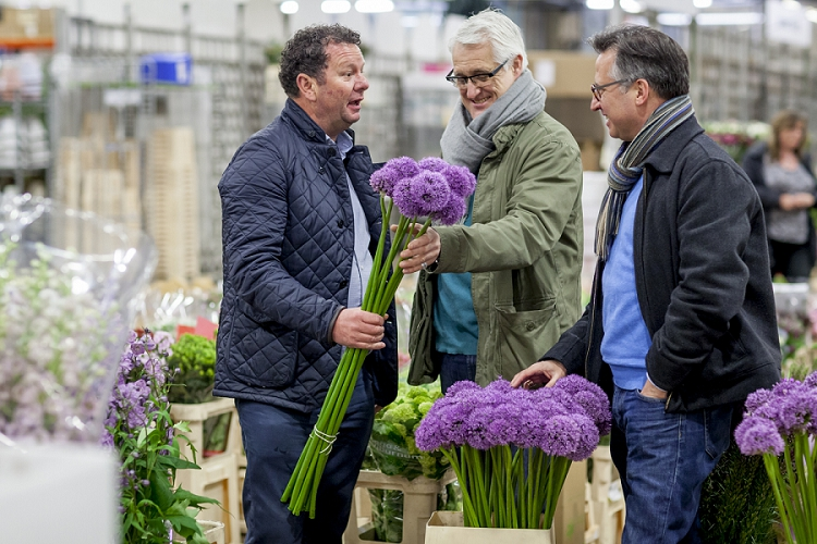 British Flowers Week 2015 Day 3 Bloomsbury Flowers - Alliums - Presented to you by New Covent Garden Flower Market
