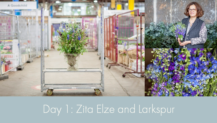 Zita Elze and Larkspur