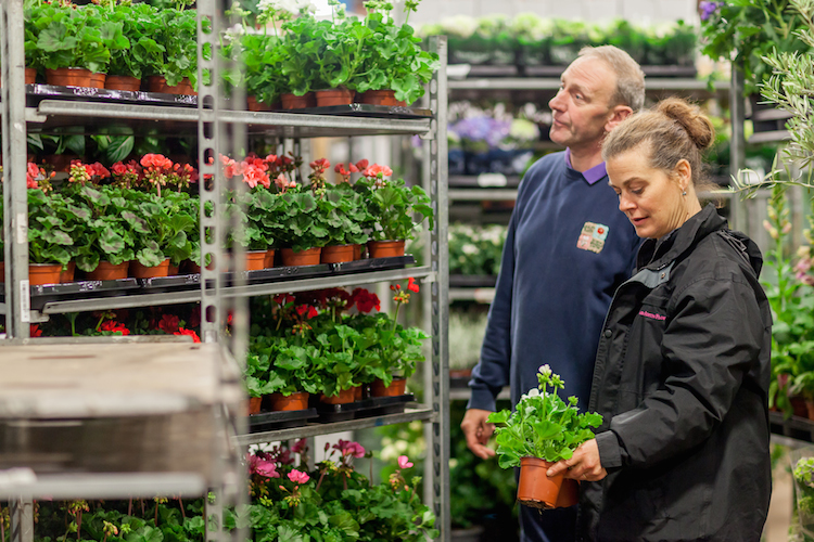 Day 3 British Flowers Week 2016, Craig Broadley from Quality Plants and Amanda Austin, presented to you by New Covent Garden Flower Market