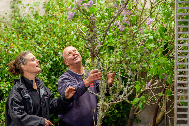 Day 3 British Flowers Week 2016, featuring David Gorton from GB Foliage and Amanda Austin, presented to you by New Covent Garden Flower Market