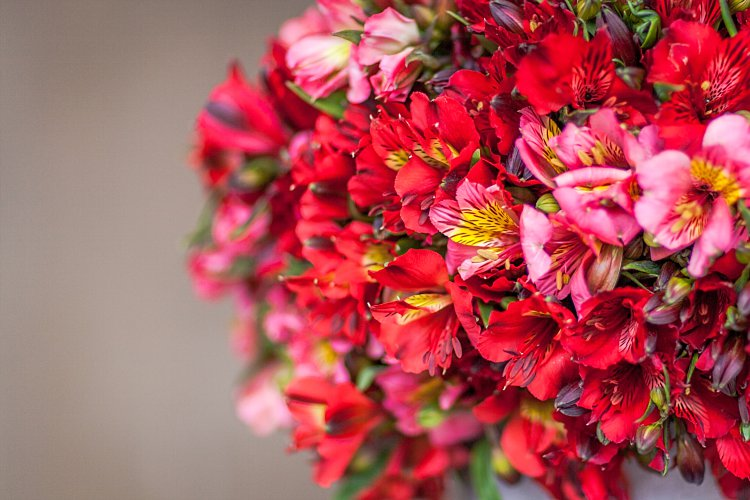 Day 5 of British Flowers Week, featuring a vase complete with red and pink alstroemeria designed by Rob Van Helden of Rob Van Helden Floral Designs, presented to you by New Covent Garden Flower Market