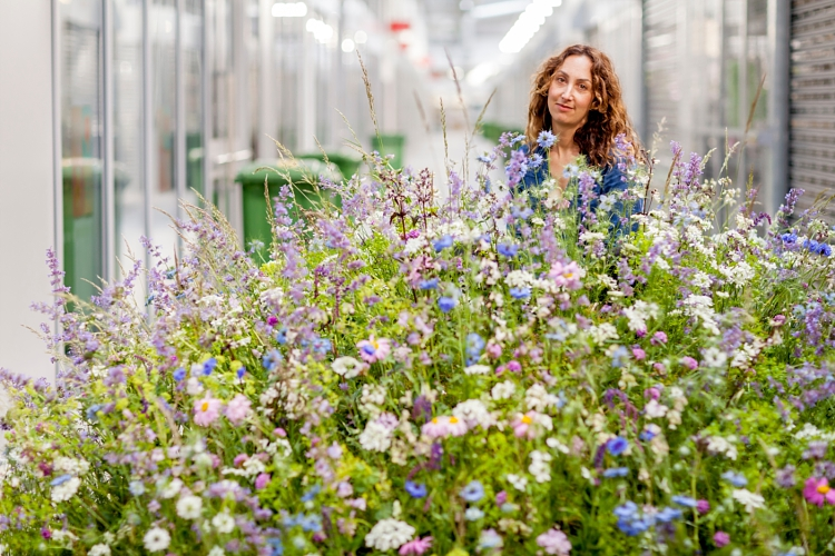 Carly Rogers for British Flowers Week 2017 at New Covent Garden Flower Market
