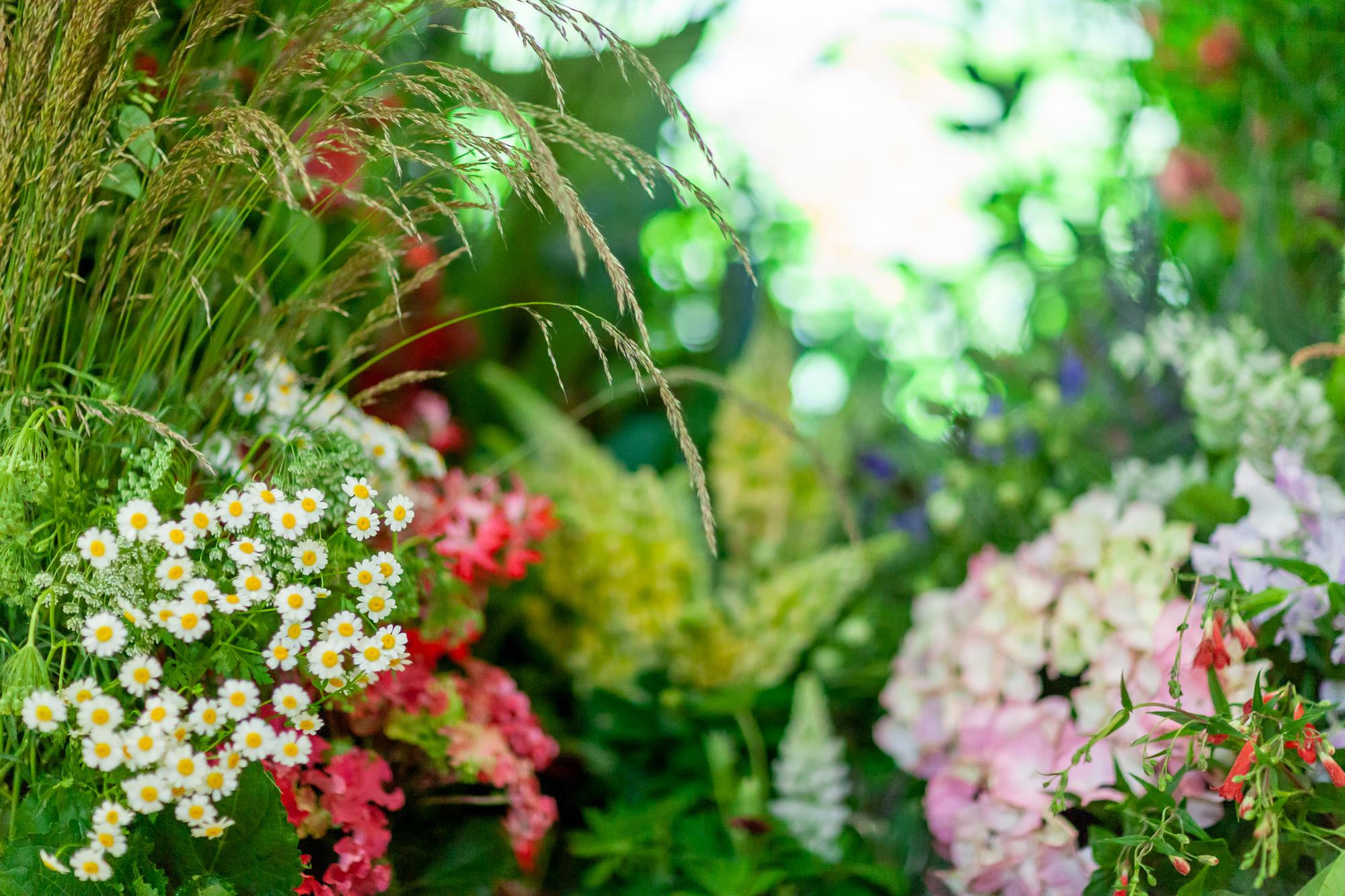 Veevers-Carter-installation-British-Flowers-Week-2018-at-Garden-Museum-by-New-Covent-Garden-Market (1).jpg