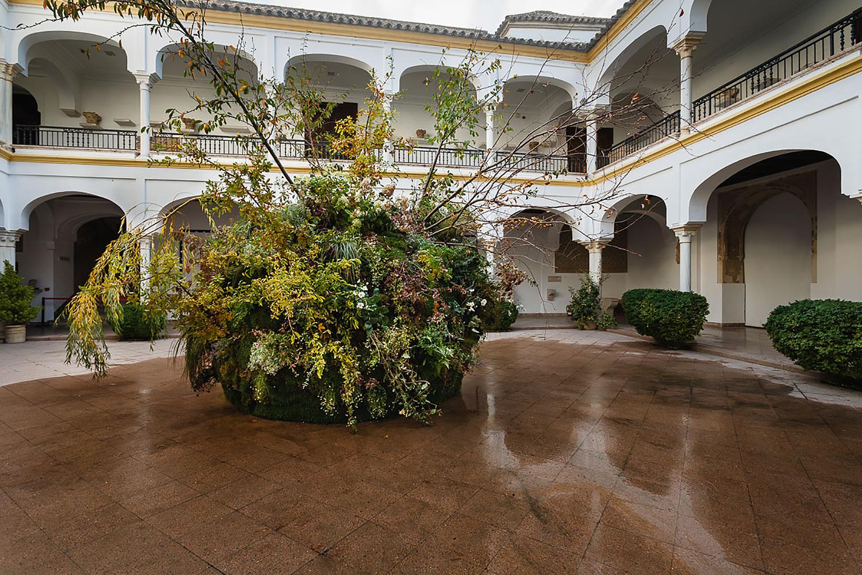 Carly Rogers JR_181019_Flora_Finales_Arqueologico_(Baja)_01.jpg