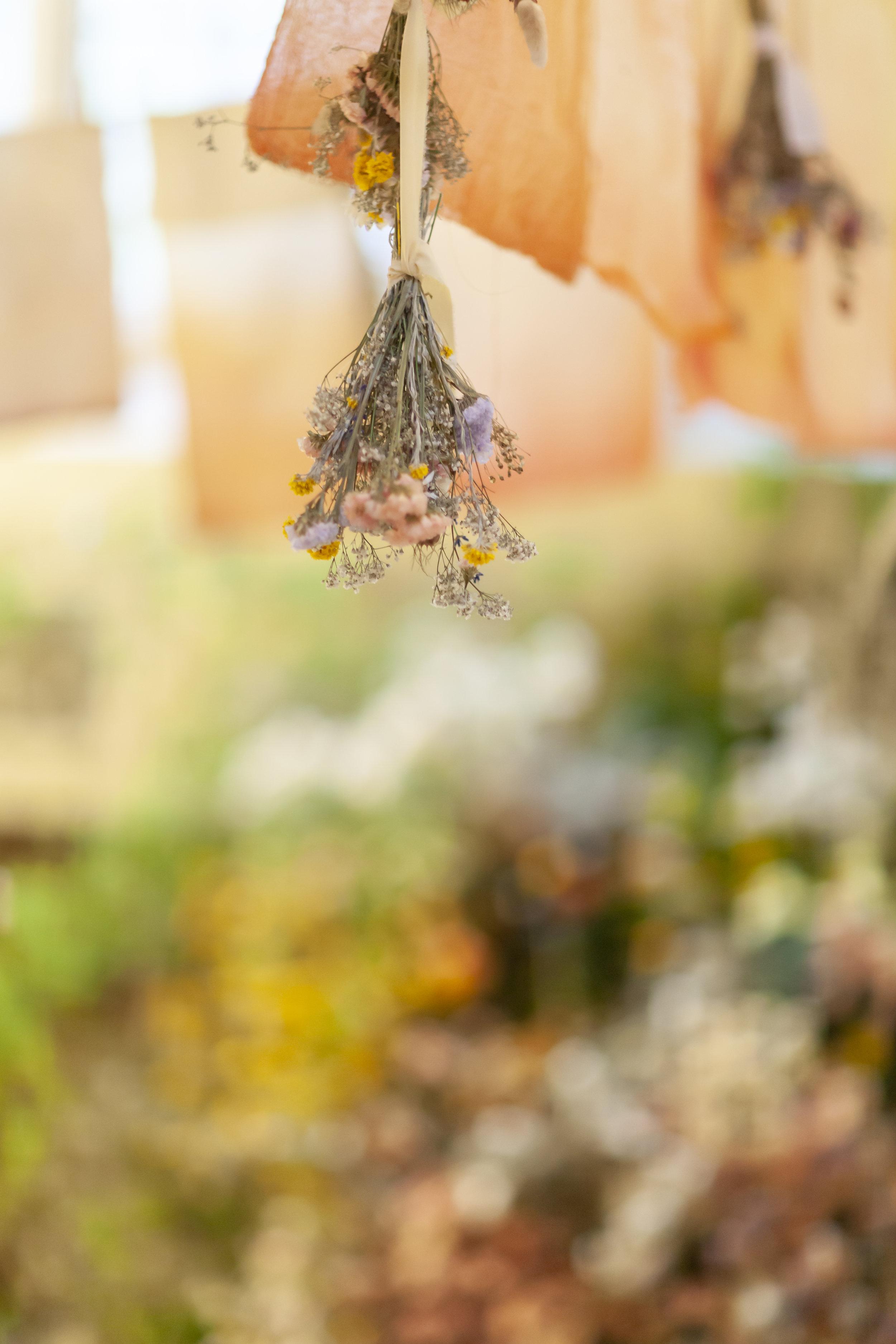 British Flowers Week 2019 -