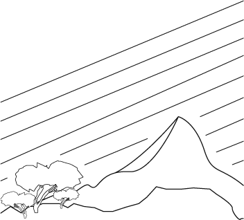 barefoot-mallorca-logo-bg.png