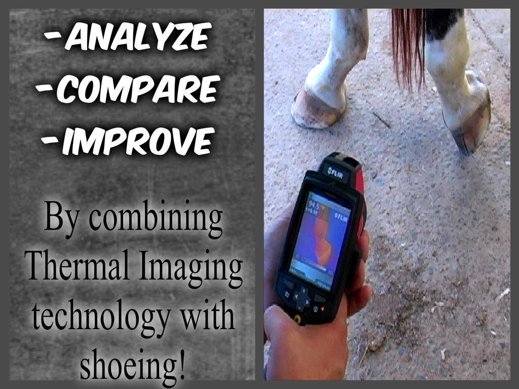 Link thermal imaging color correct.jpg