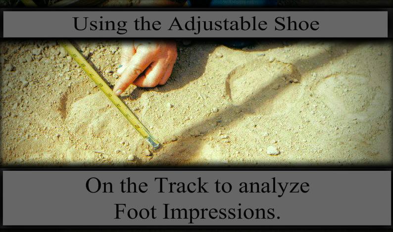track impression filtered.jpg