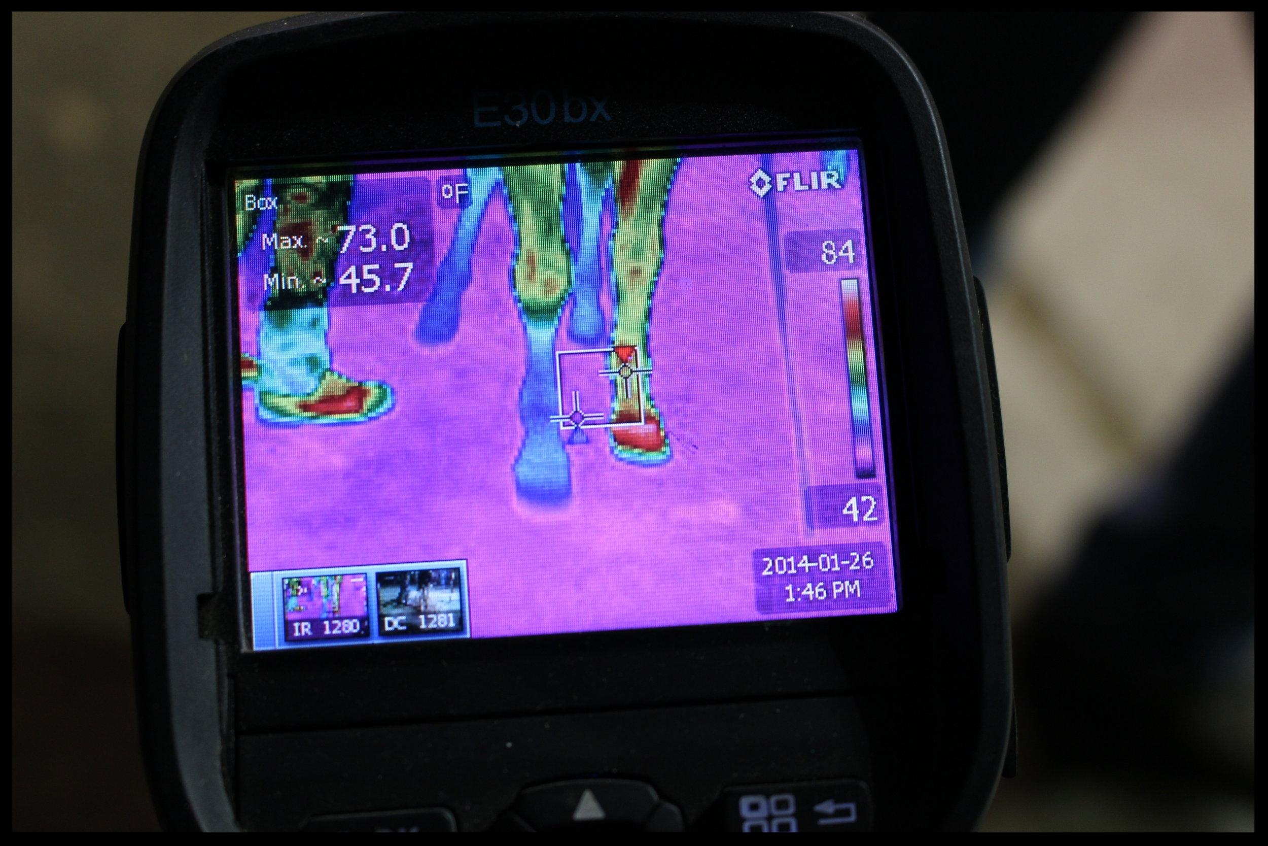 10 EFT Jan. 2014 Thermal Image of circulation in lame legs and hooves.JPG