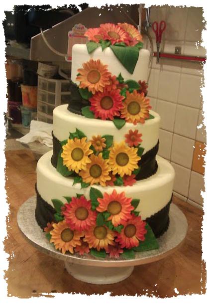Cammie cake daisy