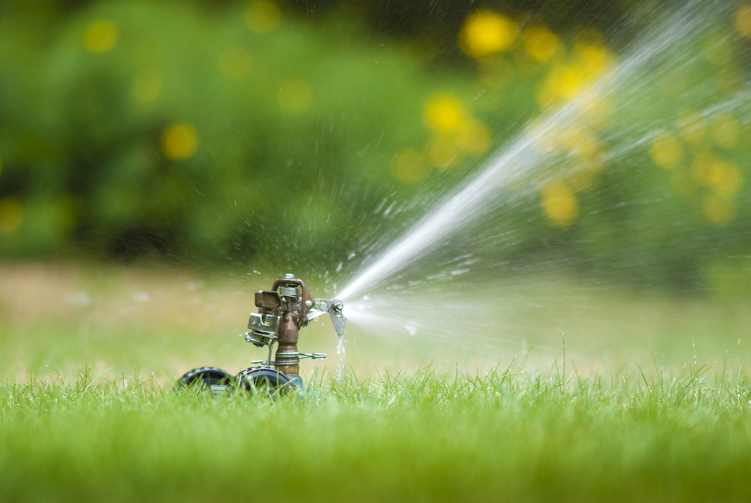 Helpful Links - Learn more about regulated fees on your water bill, water conservation techniques, and hurricane preparedness here.