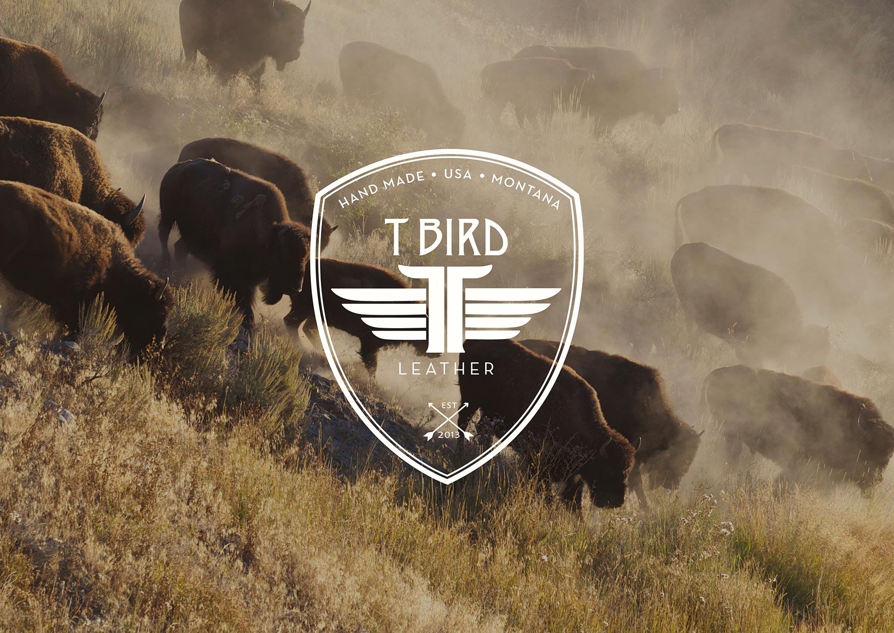 tbird leather_welcome.jpg
