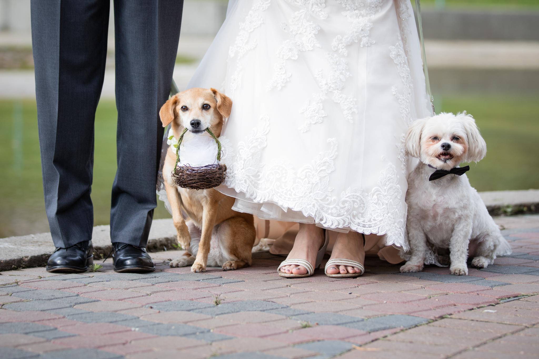 Parker_wedding-8.jpg