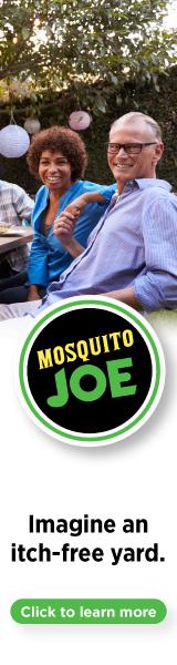 Mosquito Joe   SEM