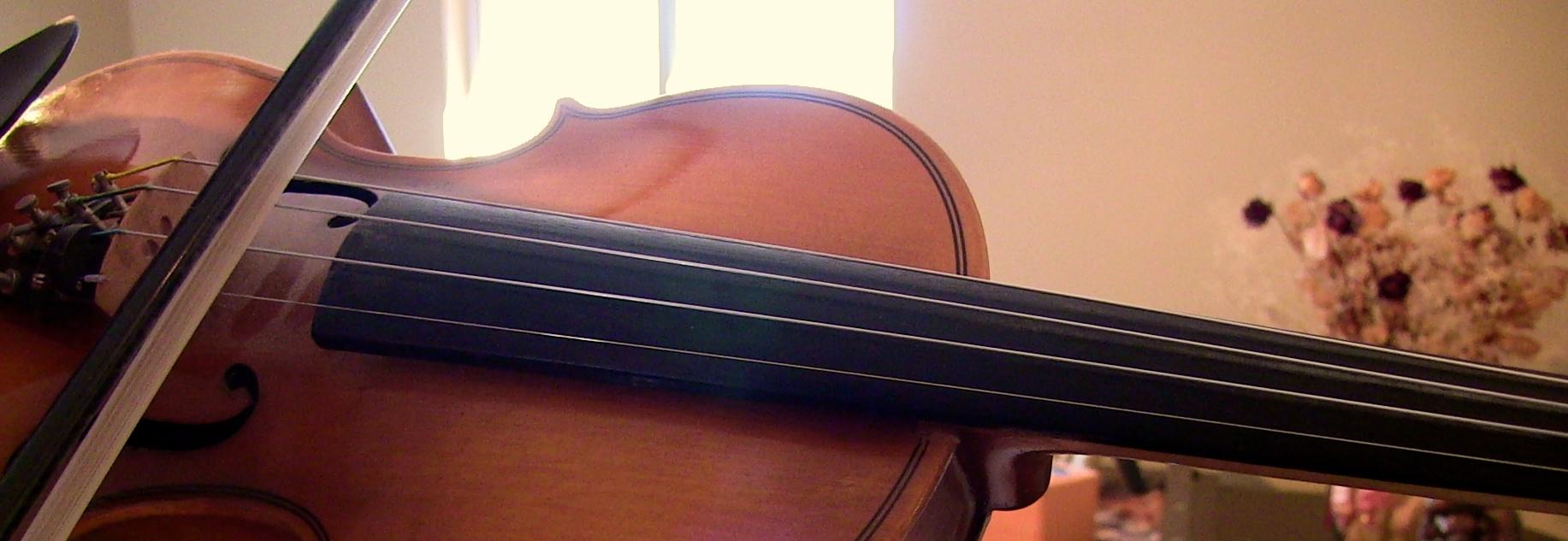 Strings-Violin-Viola-Cello-Bass