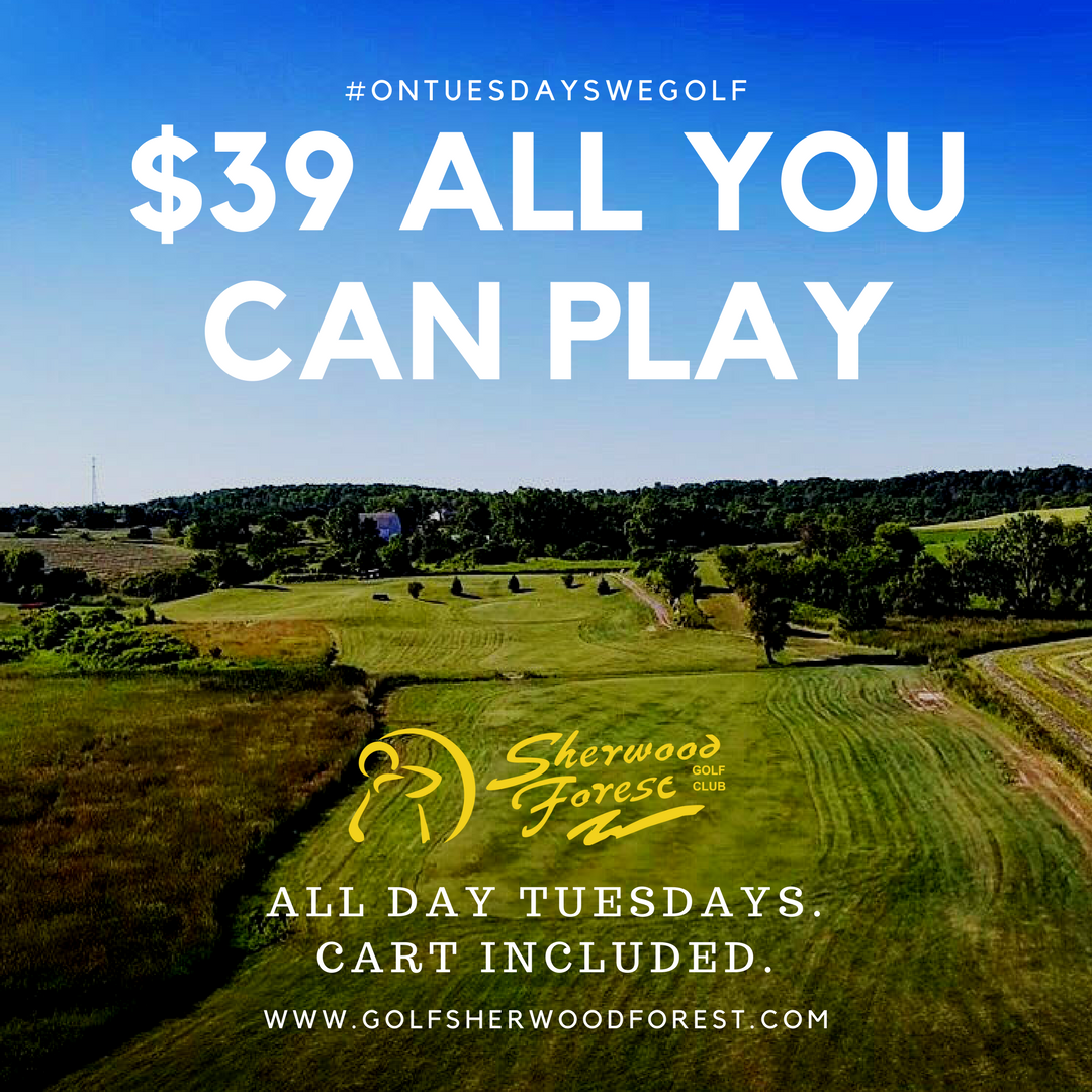 $39 ALL YOU CAN PLAY (1).png