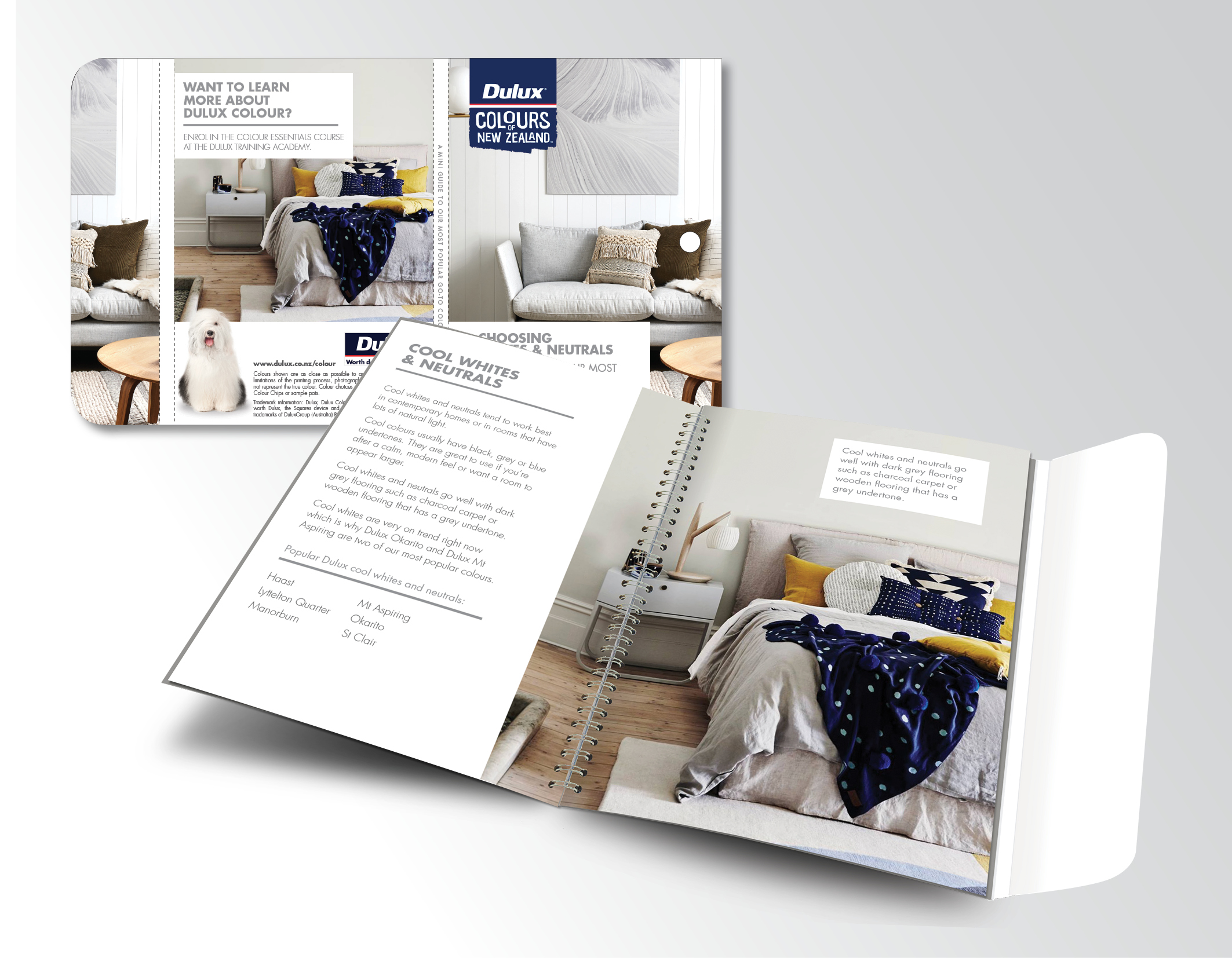 DULUX POCKET COLOUR   Creating a useful retail sales tool