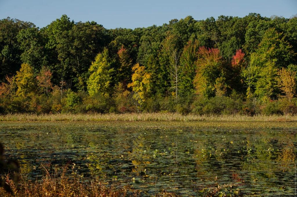 Fall Colors Begin at Haven Hill Lake 092714-5243 1024x768.jpg