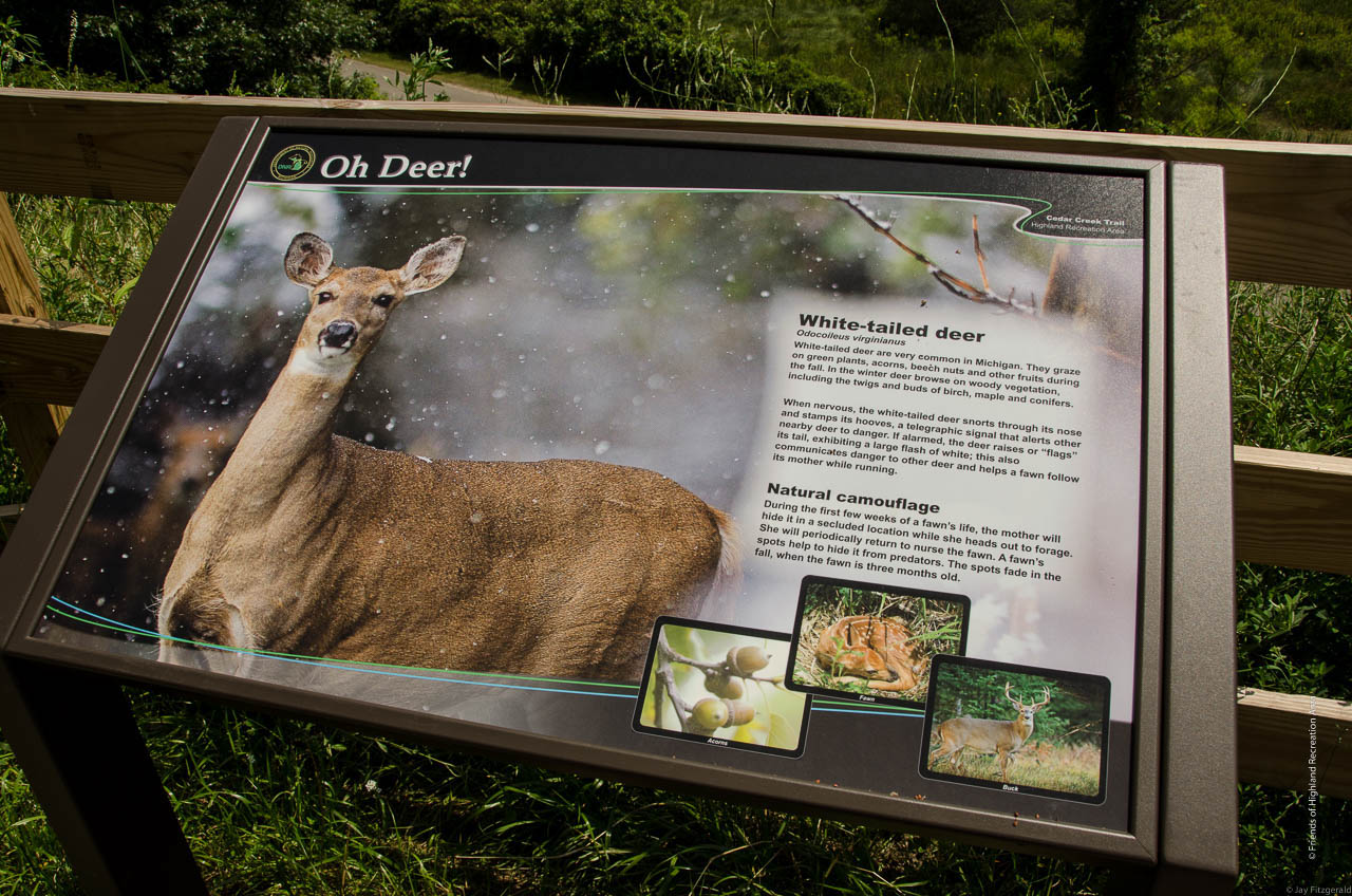 The Cedar Creek Trail features informative wildlife signs at various viewpoints through the park.