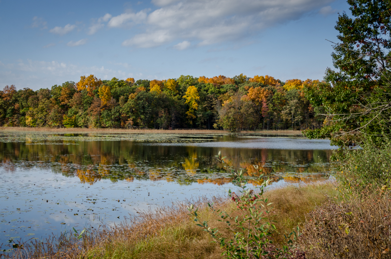 HSRA Fall Michigan Color 2016 - DSC_5907.jpg