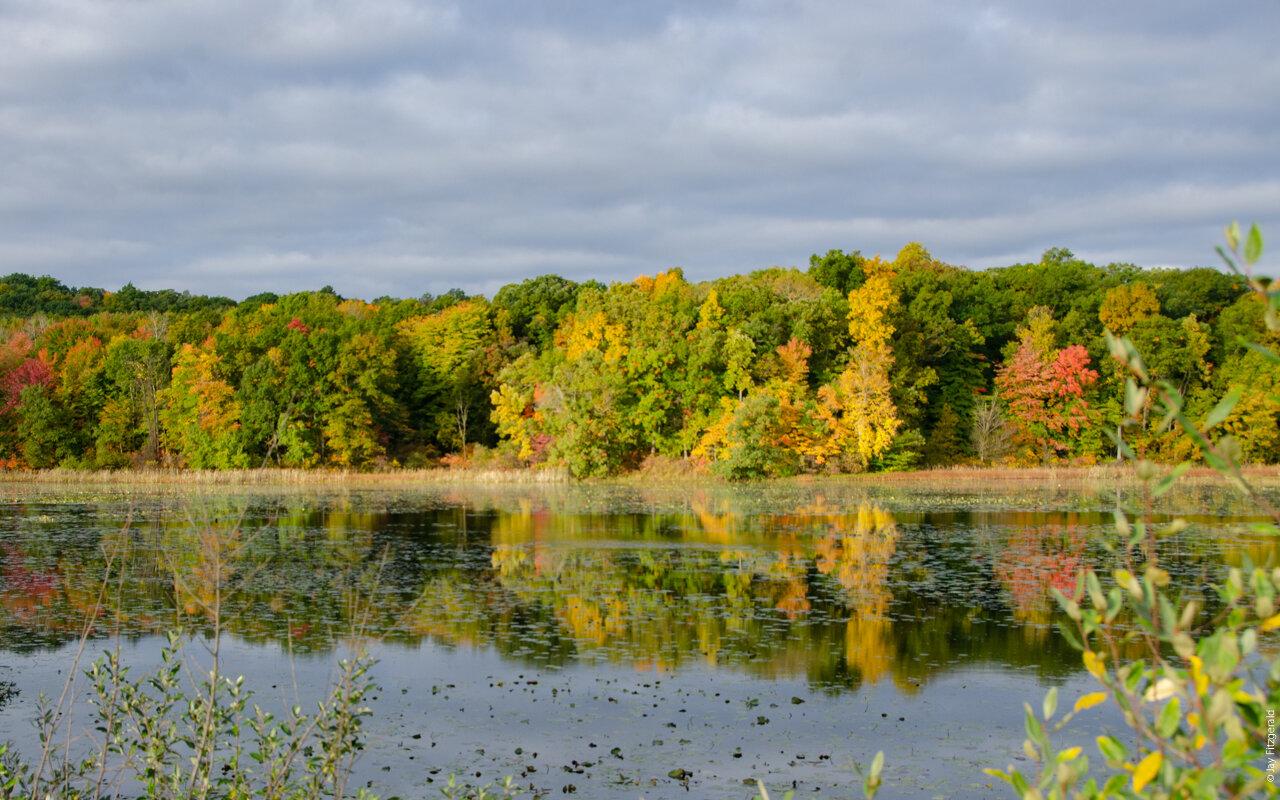 Haven Hil Lakeshore Fall Colors October 2019-7866.jpg