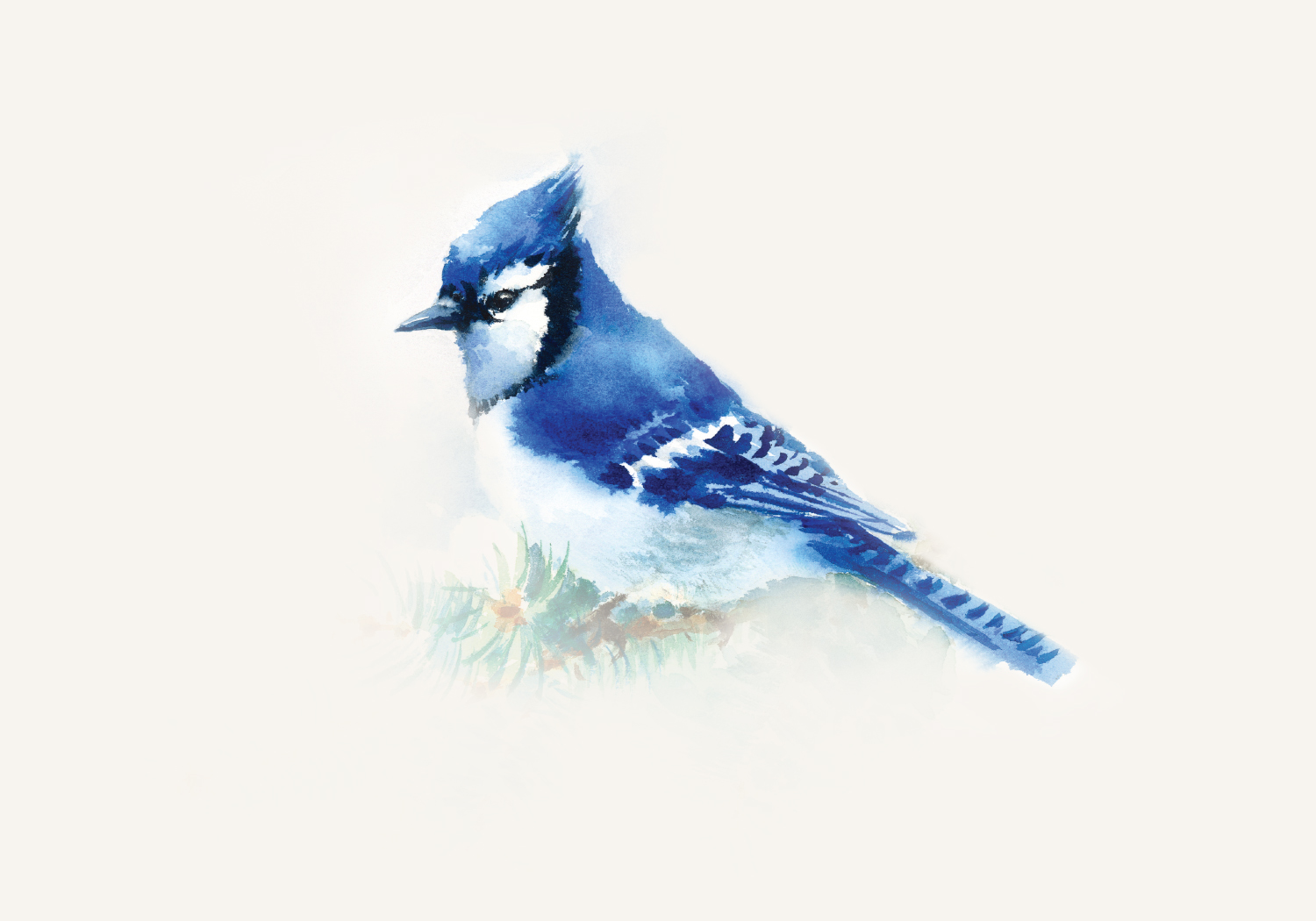 BlueJay_Wine_10.jpg
