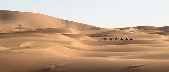 Breathtaking natural beauty of the Sahara Desert, a couple of hours before sunset.