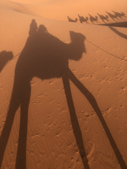 Long shadows of campers and dromedary create a unique pattern on the landscape of the desert.