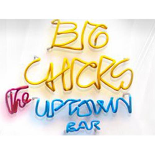 big_chicks.png