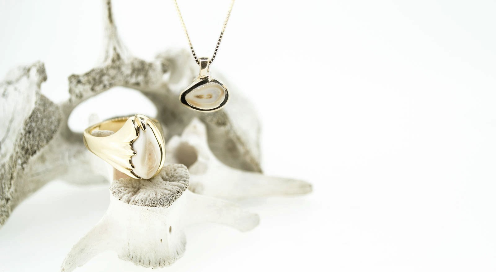 The Elk Ivory Collection