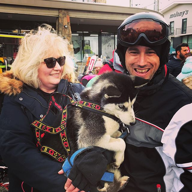 Our driver, Karl, got a cuddle with the @australiansleddogs littlest member, Cersei, at the weekend. Isn't she adorable! 🐺