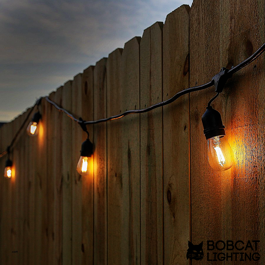 Modvera Outdoor String Light 48ft With