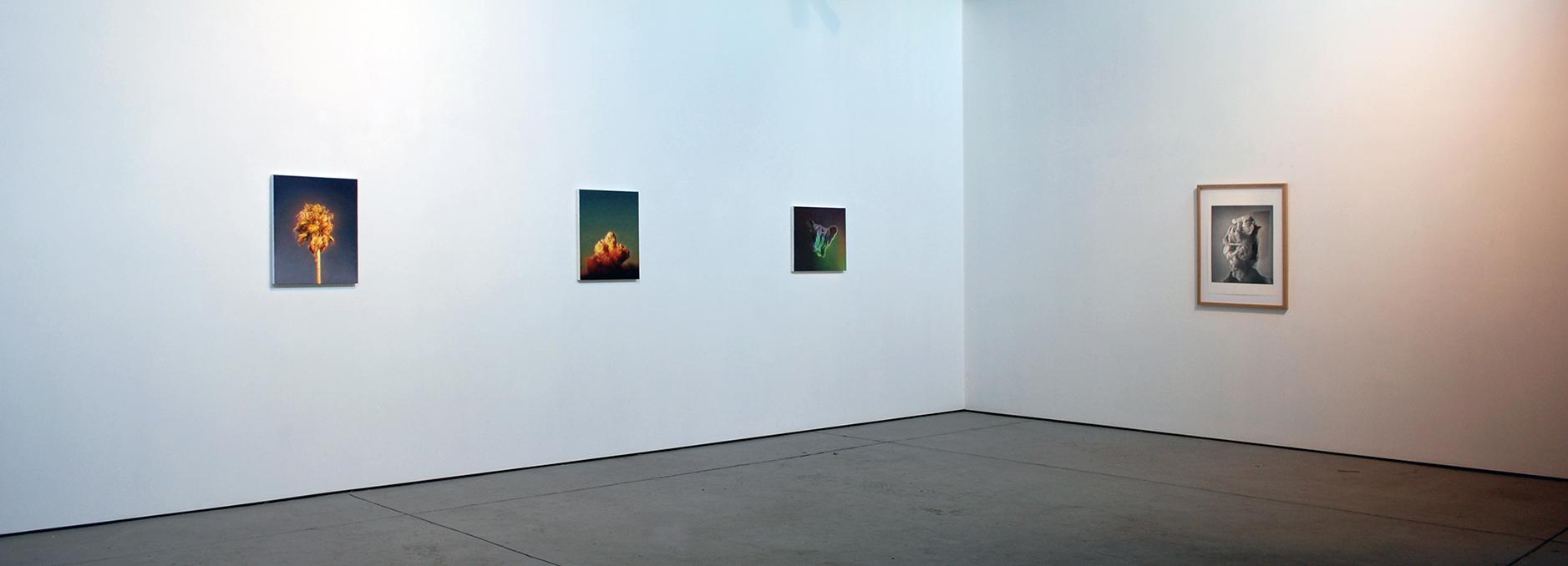 James Bonnici installation Lindberg Galleries 2018