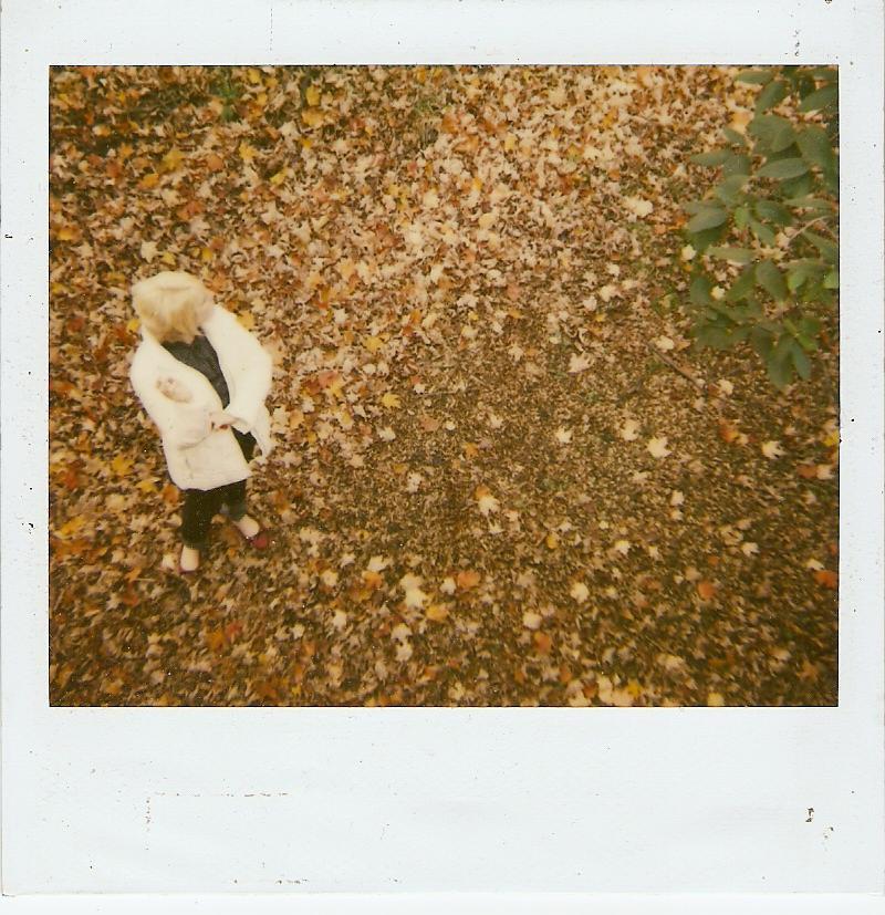 chloe fall 2006.JPG