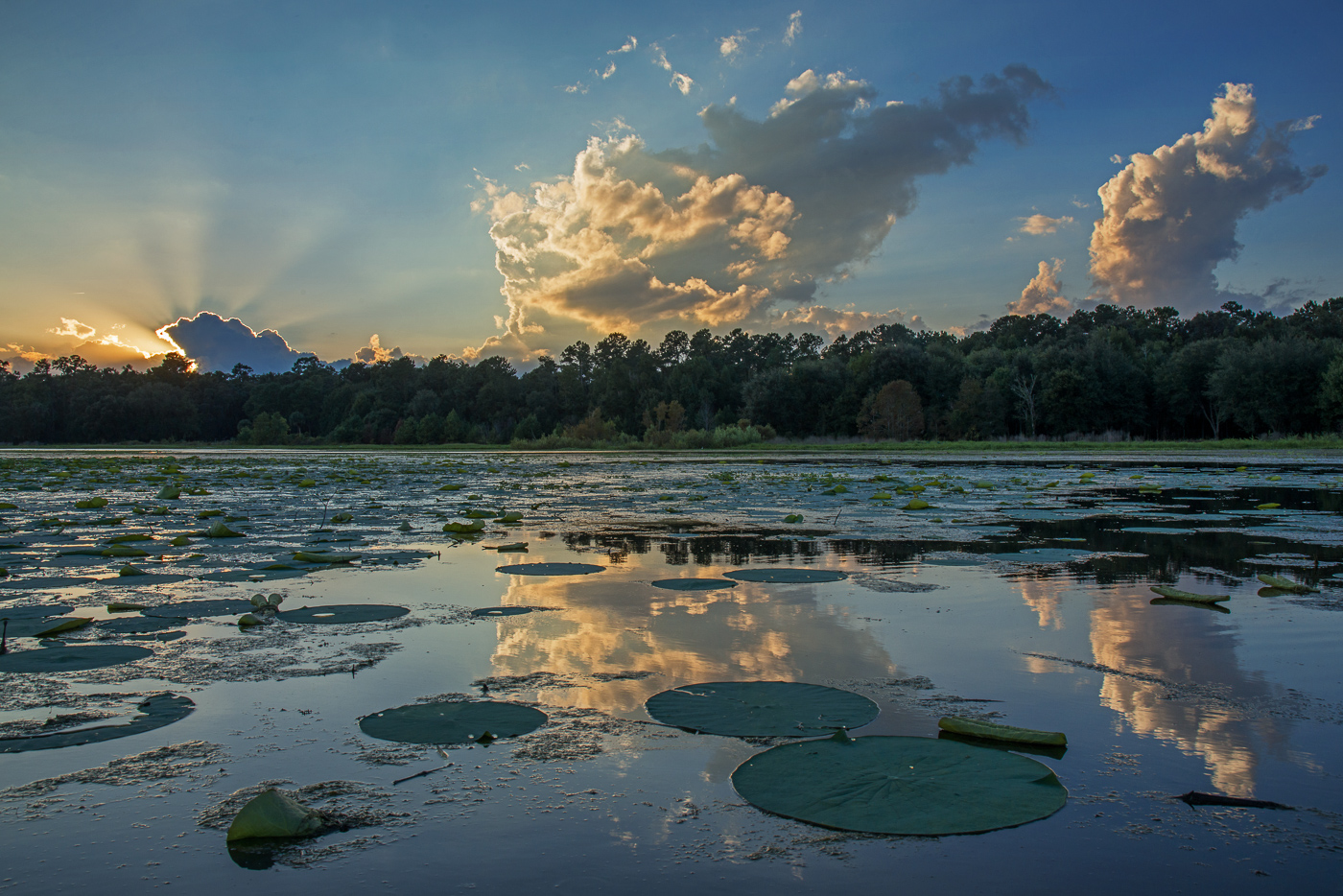Drama on Tuscawilla Lake