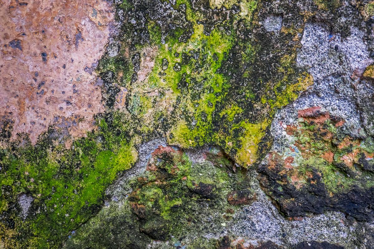 Natural Fresco, Baracoa