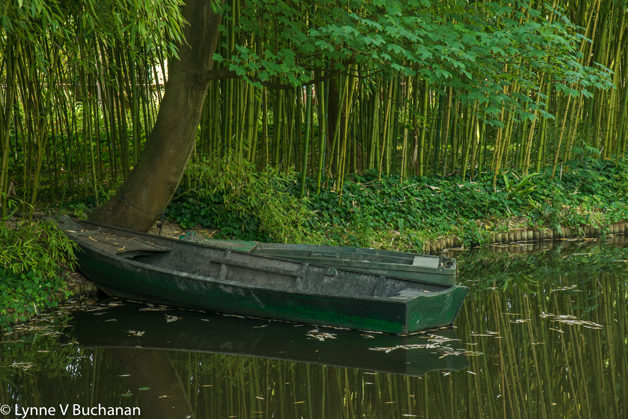 Monet's Boat by the Bamboo