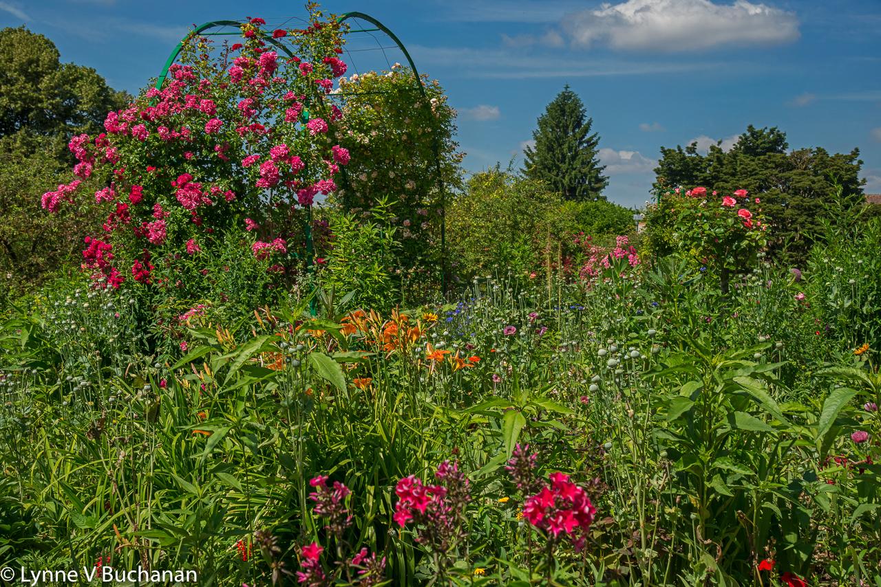 Rose Trellis in Monet's Gardens