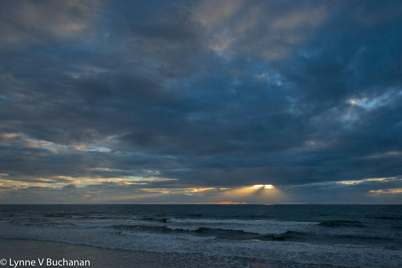 Spotlight on the Waves