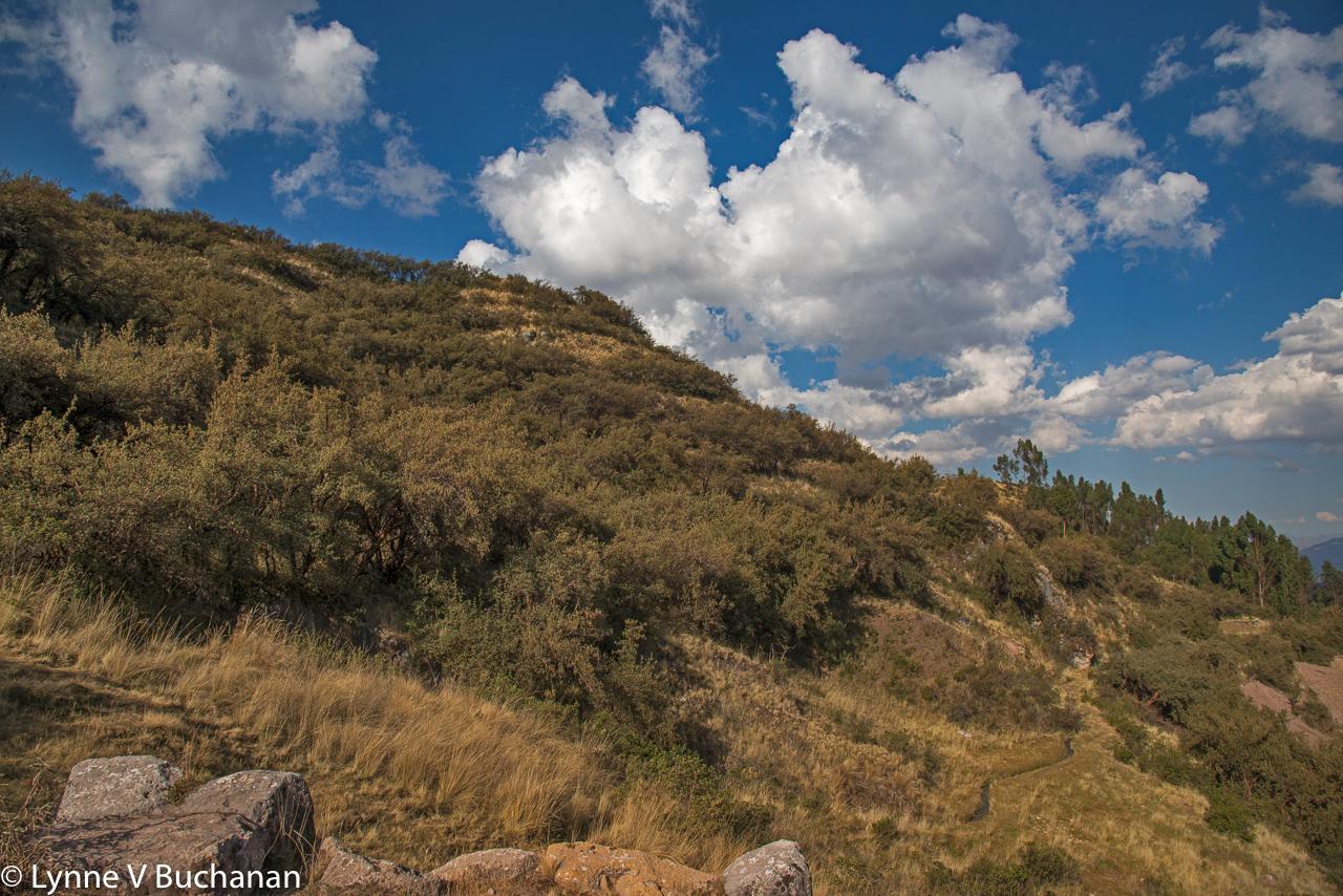 View from Tambo Macha