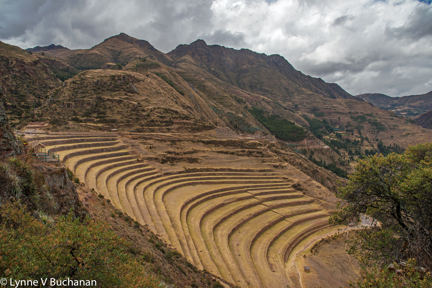 Terraces, Sacred Valley