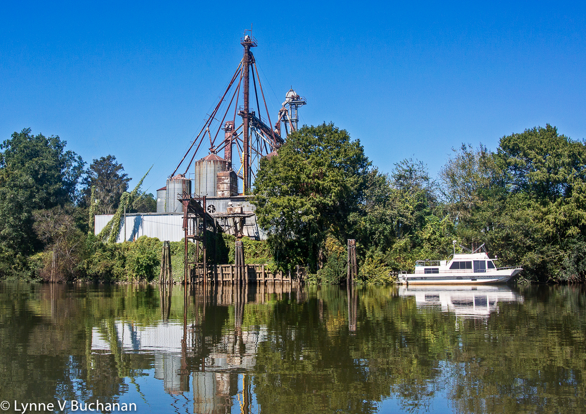 Neal Lumber Mill, Apalachicola River