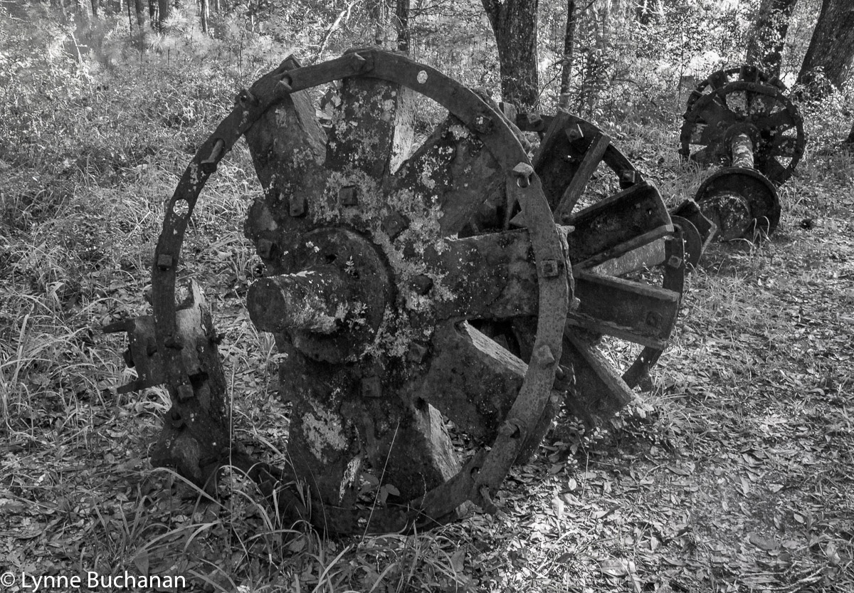 Old Steamboat Wheels