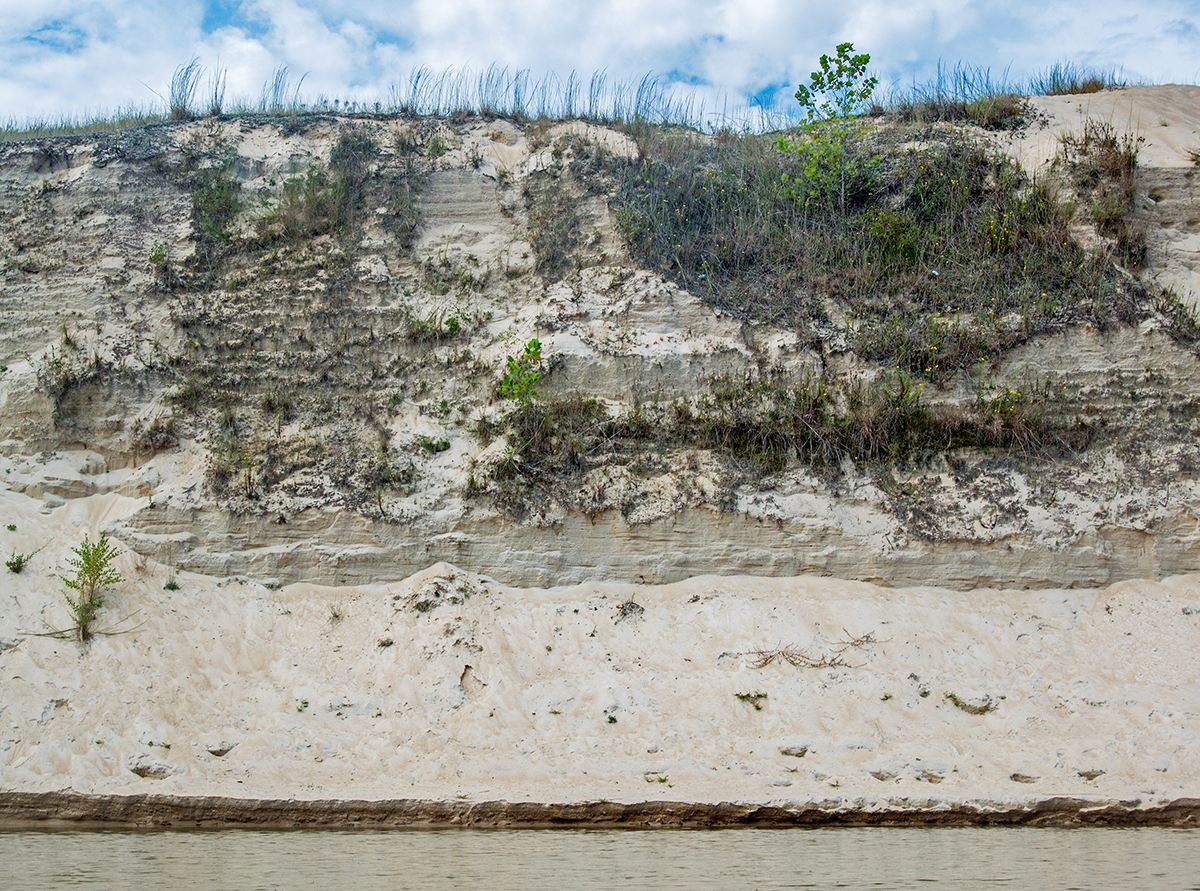 Sand Mountain, Apalachicola River (Army Corps Dredging)