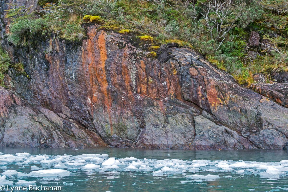 Agostini Fjord Rocks and LIchen