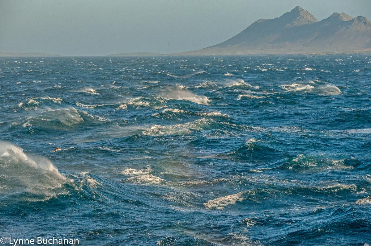 Stormy Seas, The Falklands