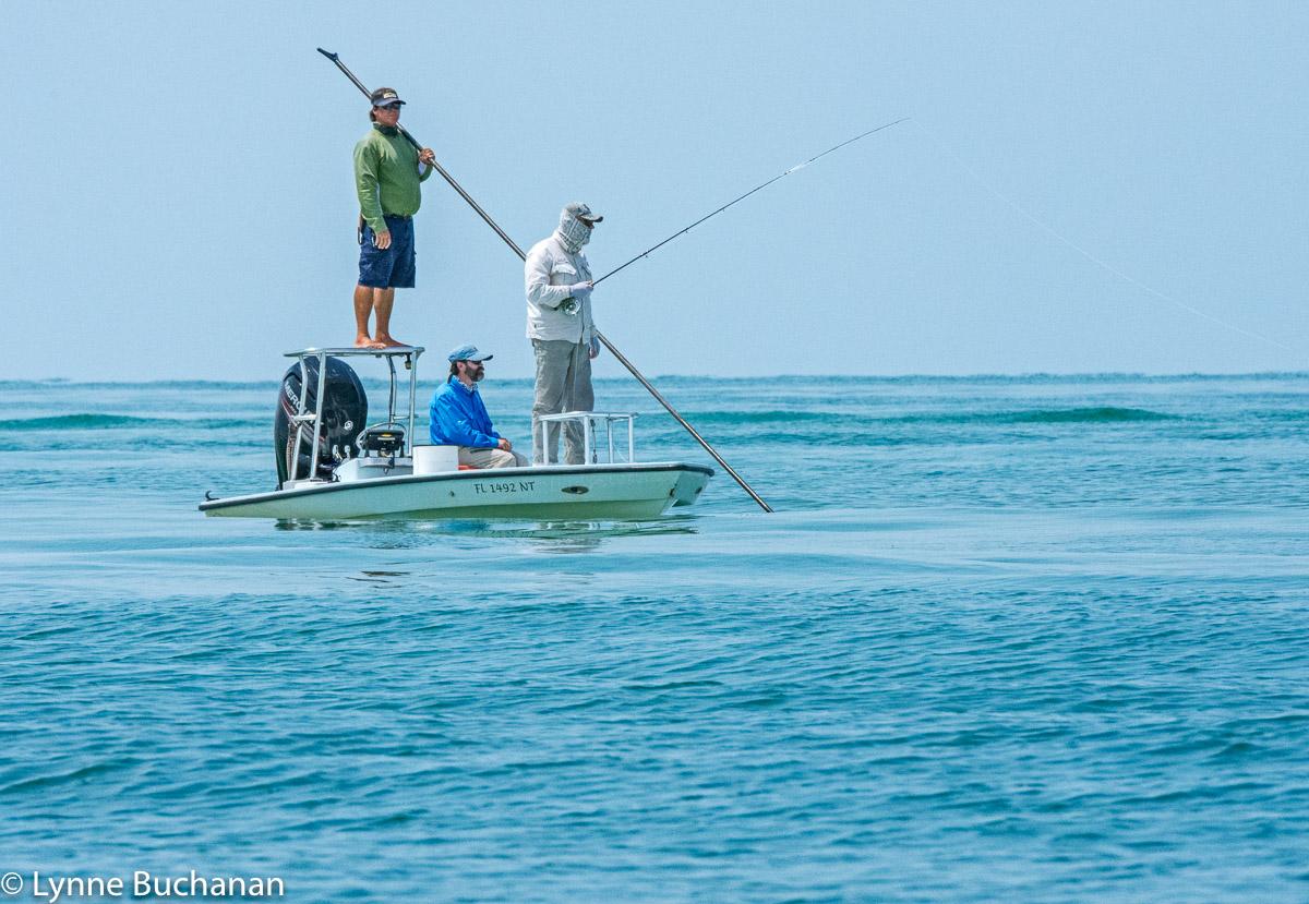 Poling for Tarpon near Caya Costa