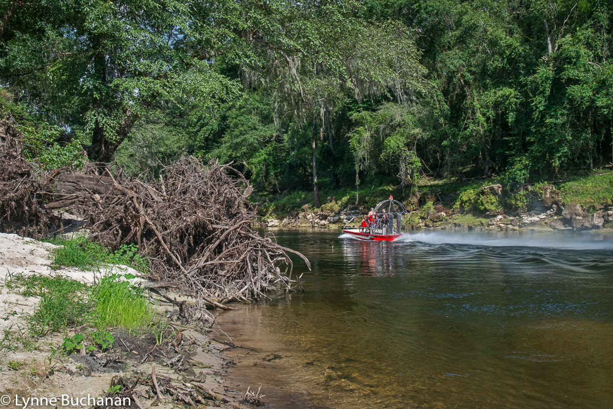 Airboat Speeding on the Withlacoochee
