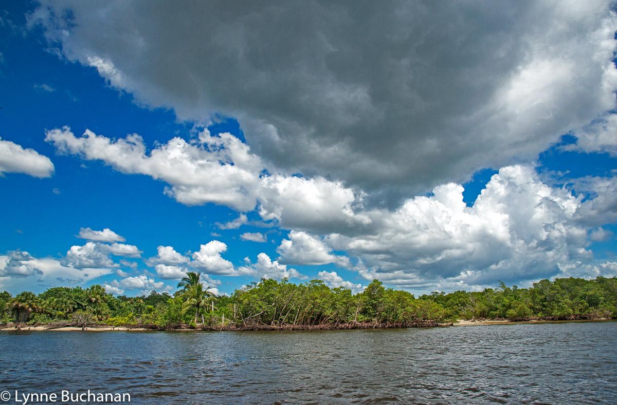 Keewaydin Island Wilderness Area